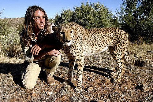 CHEETAH MAN    Follow the unbelievably right-there-with-them efforts of a man who works with the Cheetah Conservation Fund in Nambia to help orphaned cheetahs find their way back to living self-confidently and self-sufficiently in their natural environment.