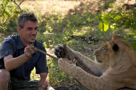 LION COUNTRY    Grab a front-row seat and watch close-up as conservationist David Youldon and others, in so many different and fascinating ways, help prepare lion cubs born in captivity for release into the African wild.