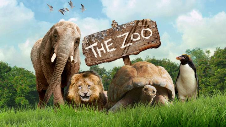 THE ZOO    A peek inside the fascinating day-to-day experiences of the team behind Ireland's biggest family attraction, the 184-year-old Dublin Zoo…There are always new animals, new stories, new drama.