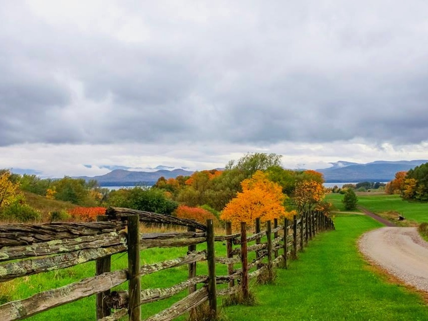 Farms, Foliage & Food - Explore a working Vermont farm and interact with the animals, taste and learn about bountiful local foods from apples to cheese all while travelling the vibrant fall colors on our back roads.