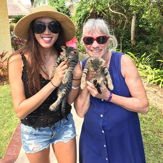 Cute animals and reptiles here in Mayan Riviera pickleball vacation! 🦎 🐱 🐊 #pickleballislife #pickleballvacation #pickleball