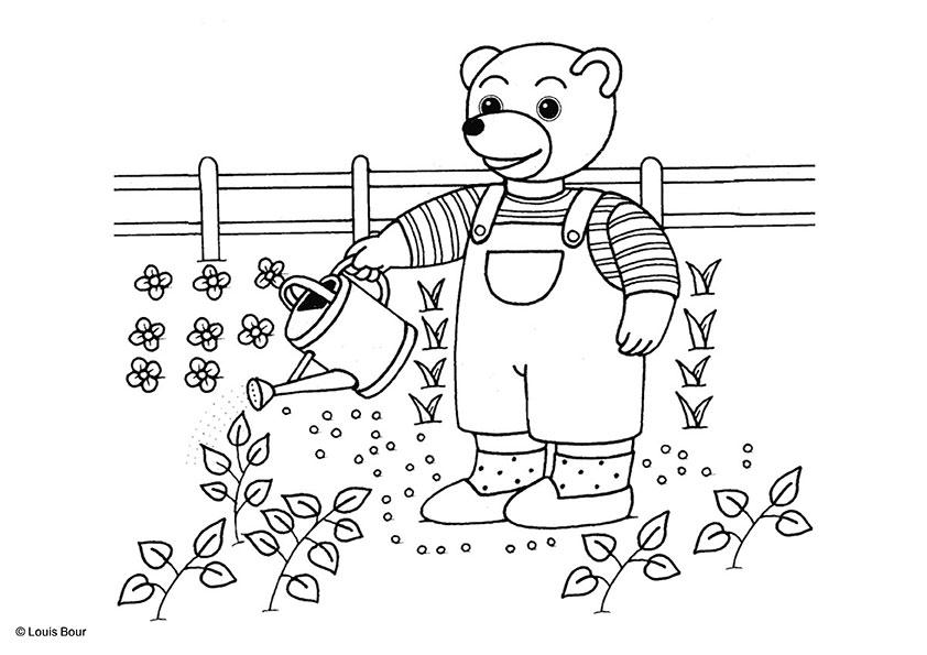 PetitOursBrun-jardine.jpg