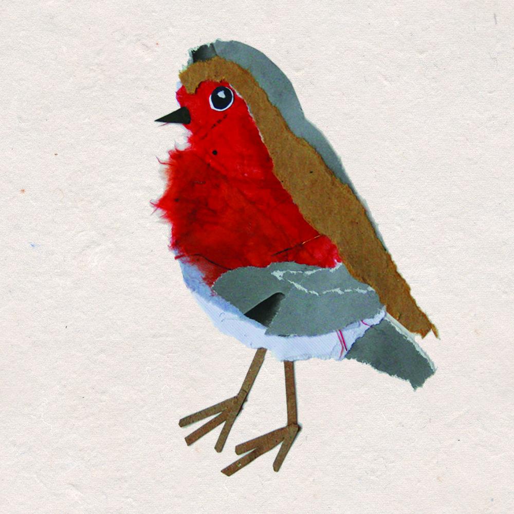 Robin Bird Design