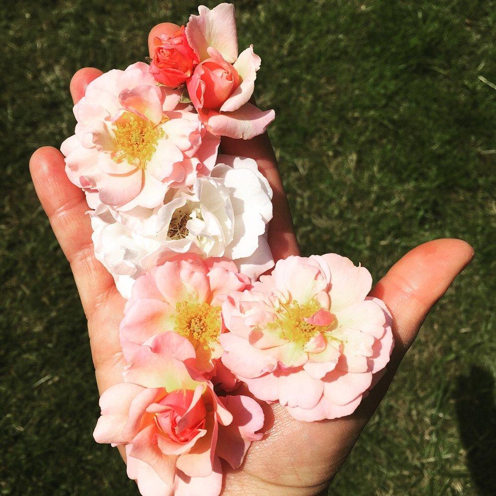 Hand Flowers.JPG