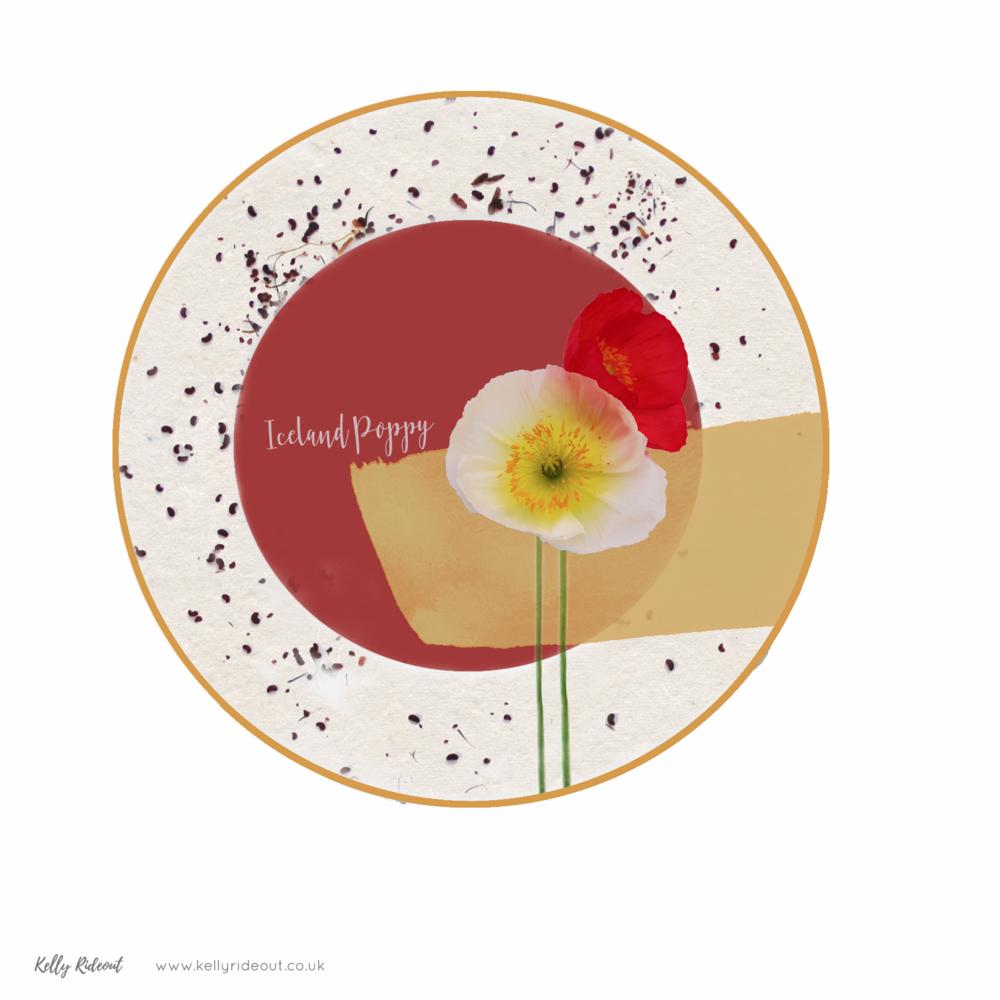 Iceland Poppy Plate Design
