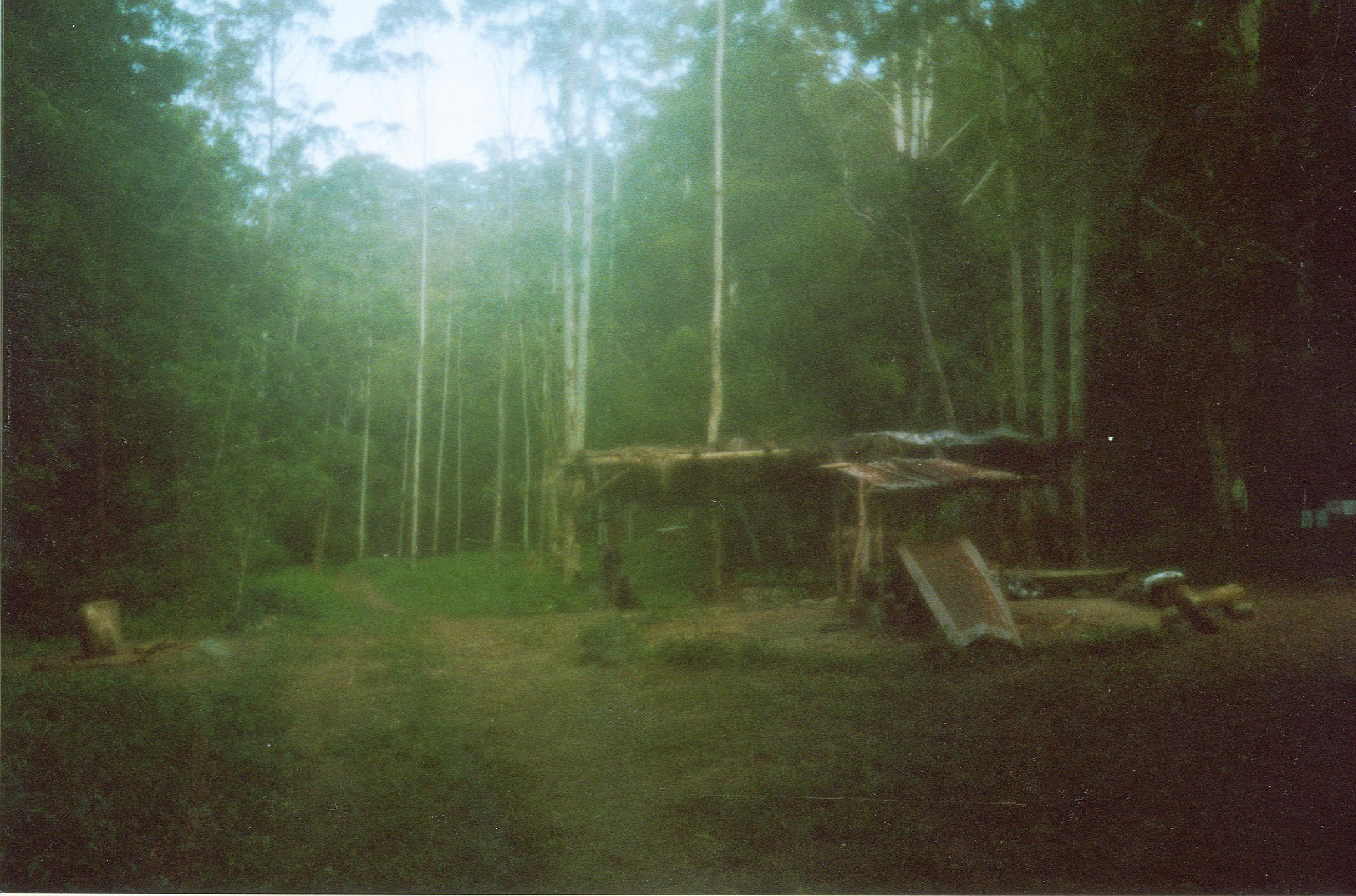 On the last day we each got a disposable camera to capture some memories.  I dropped my camera in the creek by accident, so a lot of my photographs had this hazy mystical feel that suited my memories