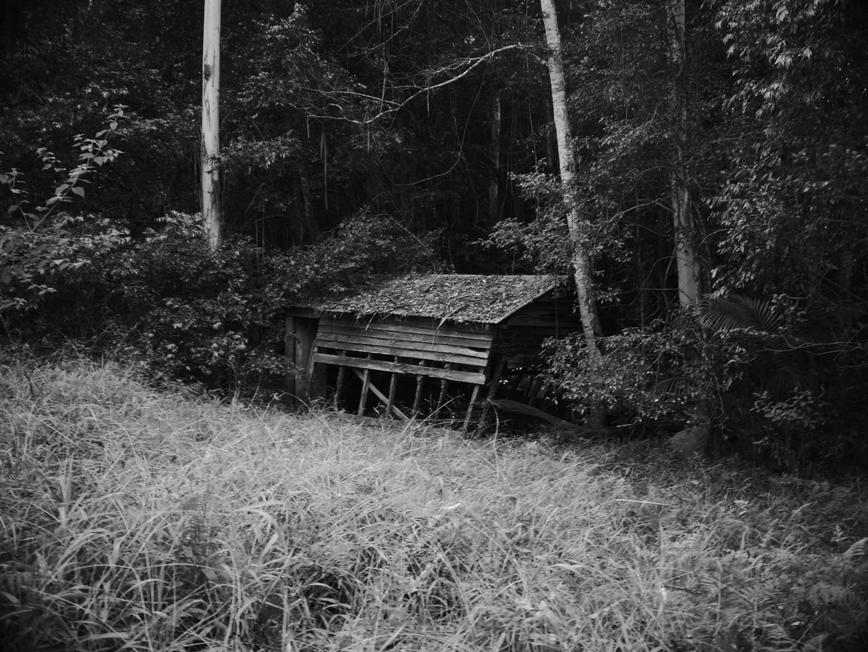 Web Hut 2013