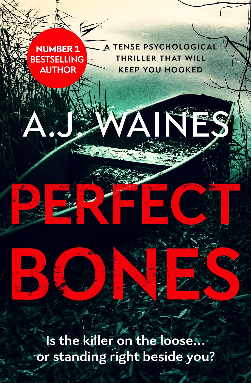 Perfect-Bones-Kindle.jpg