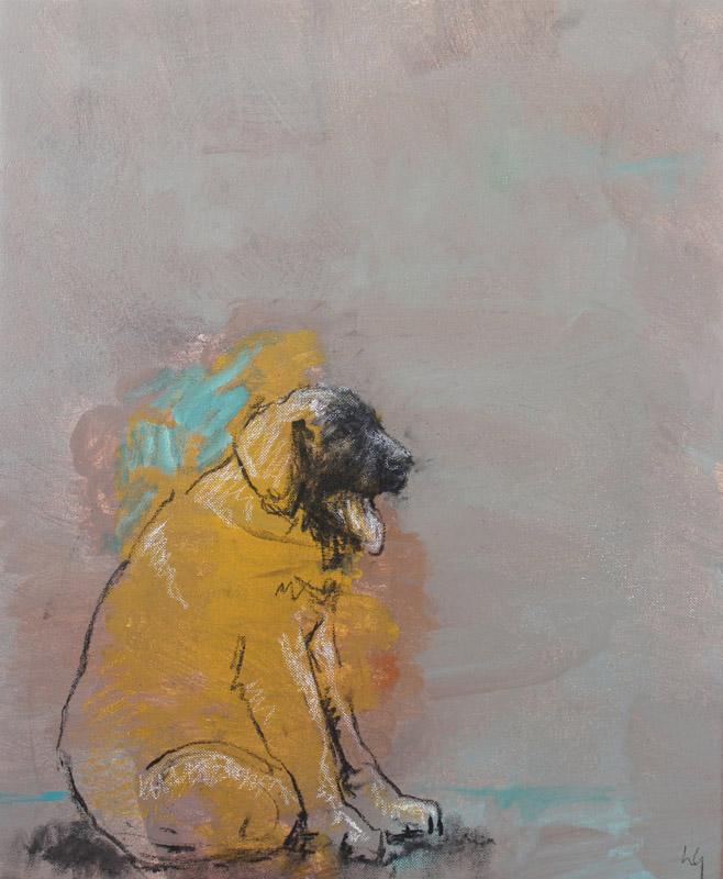 Gran Perro Amarillo