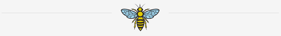 bee with lines grey.PNG