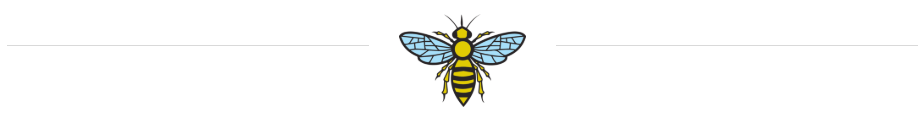 bee with lines.PNG