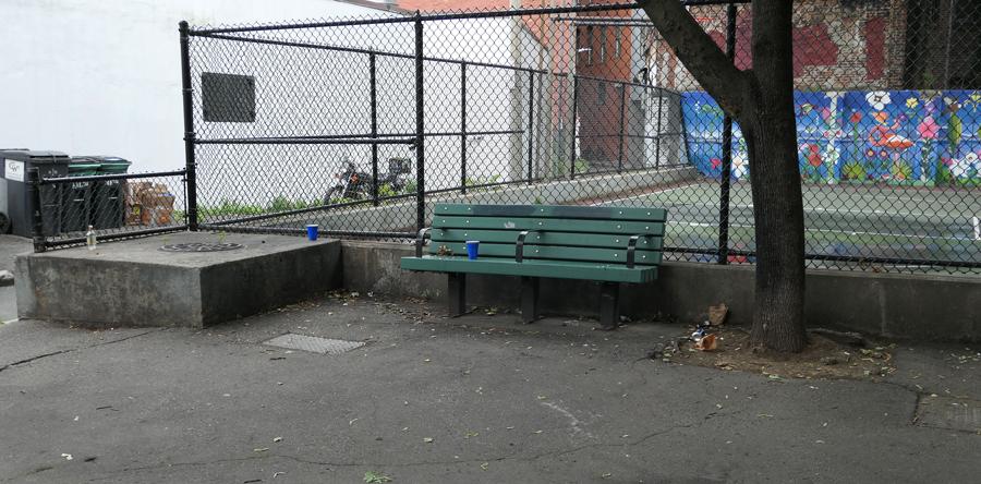 trash and debris line teh way to north end's cutillo park in boston