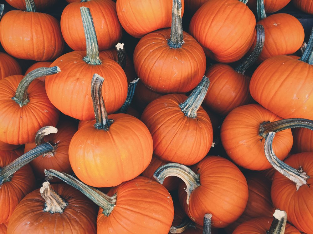 Happy Halloween! - We hope you have a spook-tacular halloween filled with plenty of toffee apples and pumpkin spiced latte!