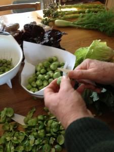 Niels hands in veggies IMG_1533