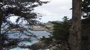 Ocean View IMG_3707