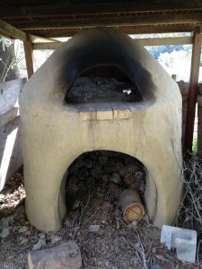 Pizza oven IMG_1560
