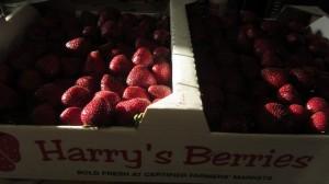 Harrys Berries