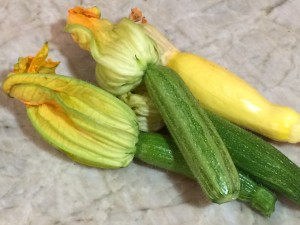 Zucchini with blossoms