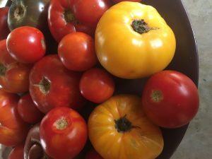 Fresh tomatoes1295