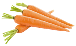 raw carrots (use)