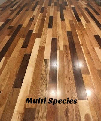 Beckman Multi Species Floor1.jpg