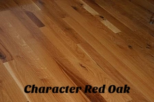 Character Red Oak Floor 2.jpg