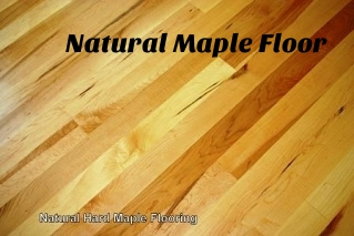 Natural Maple Floor.jpg