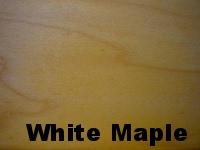 white maple.JPG