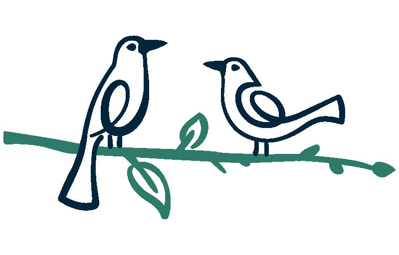 Parklife-Birds.png