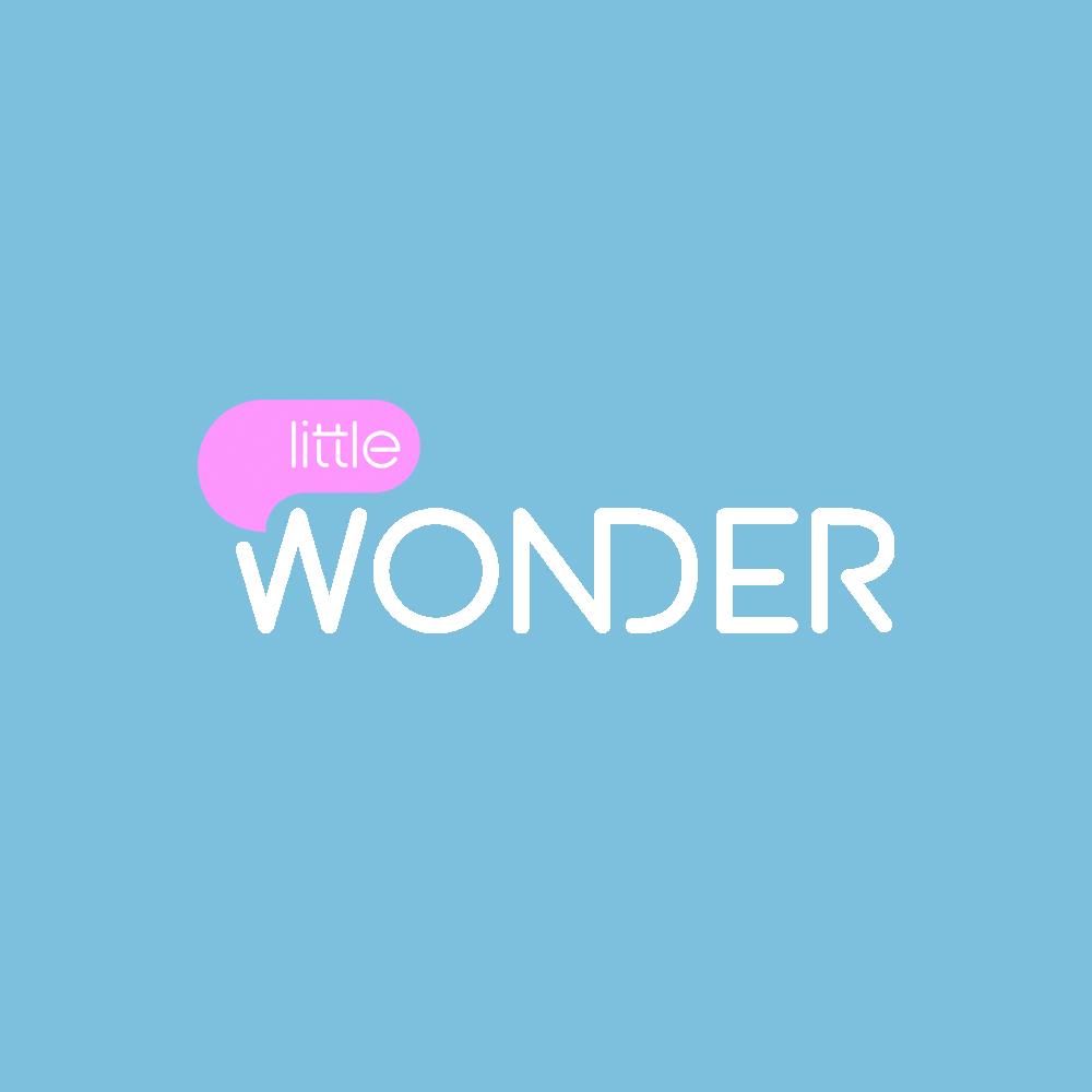 LITTLE WONDER2.jpg