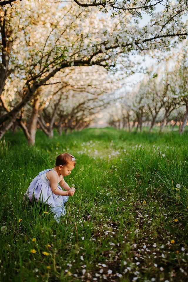 Spring Blossom Sessions: ShaiLynn photo + Film26.jpg