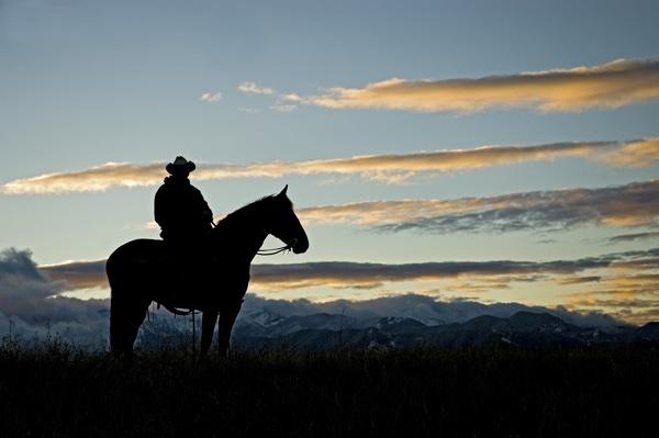 cowboy_on_horse_silhouette.jpg