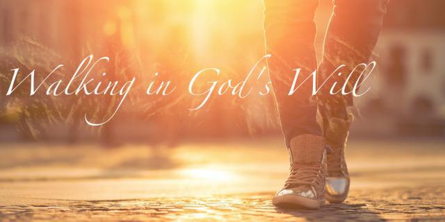Walking-Gods-Will-Wide.jpg