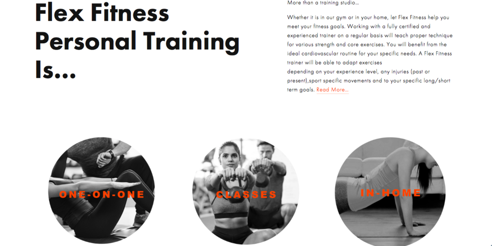 Flex Fitness Winnipeg Website #4.png