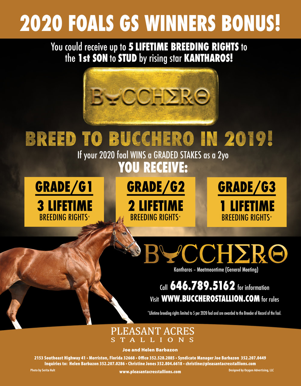 2020 Foal Lifetime Breeding Bonus Rules -