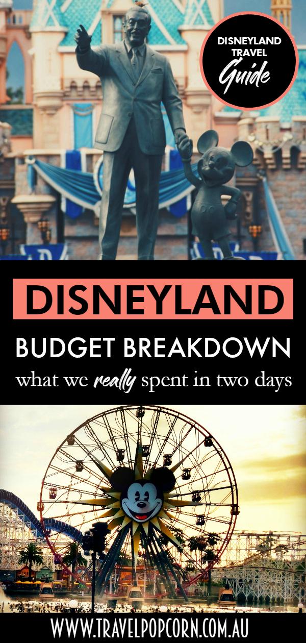 Disneyland Budget Breakdown.jpg