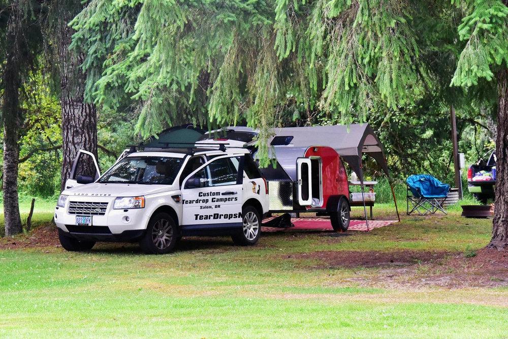 trailer-trees.jpg