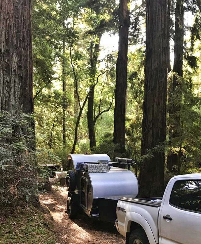 portola-redwoods-truck-use.jpg
