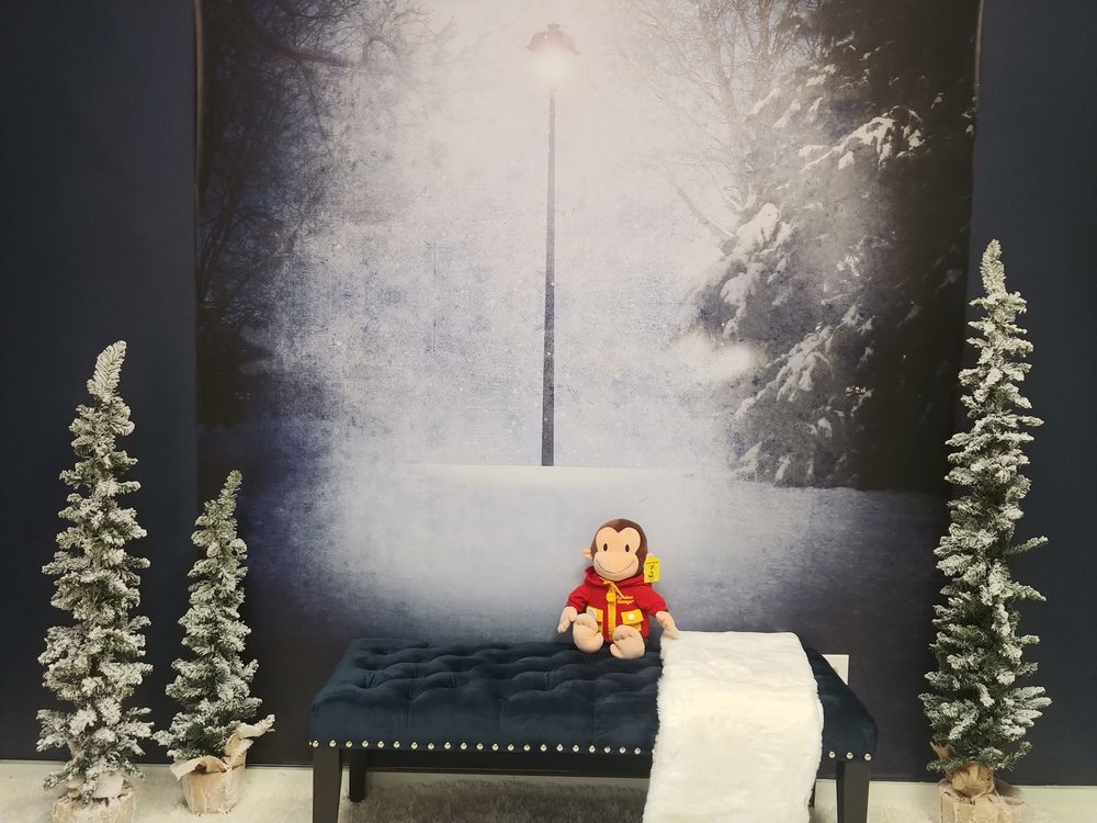 George, our unofficial mascot, showing off our special Narnia room.