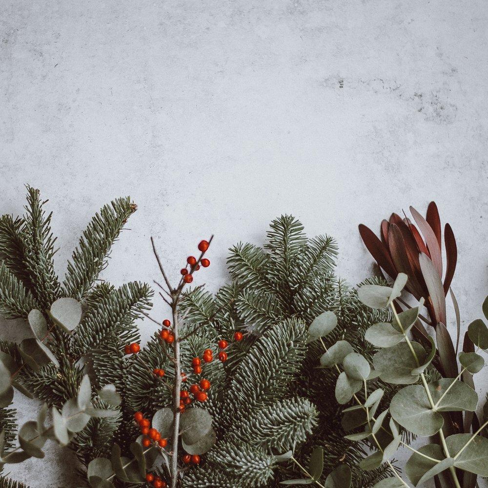 My Christmas Wish List -