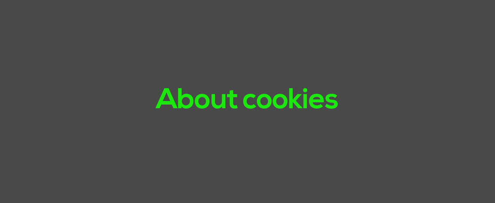 Image caroussel V2 About cookies.jpg