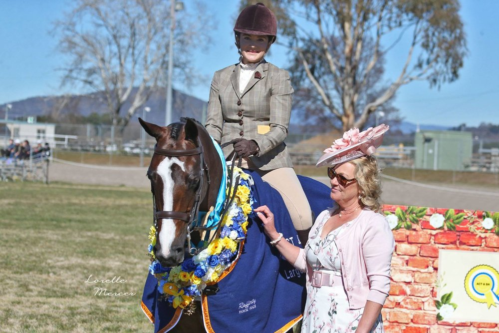 Winner of Champion Large Show Hunter Galloway ACT & STH NSW Hack Championships. Photograph: Lorelle Mercer Photography