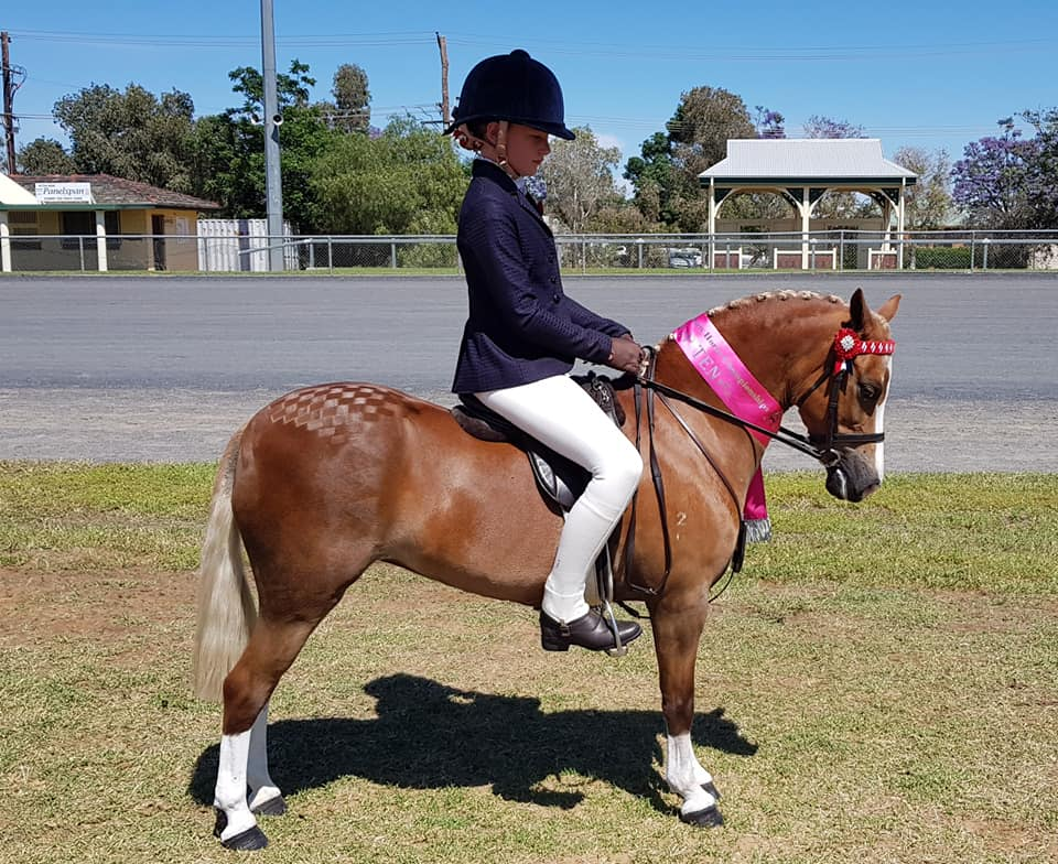 Isabella McMullen riding Lang Park Love Song owned by Linda Skinner to top 10 in the small open pony