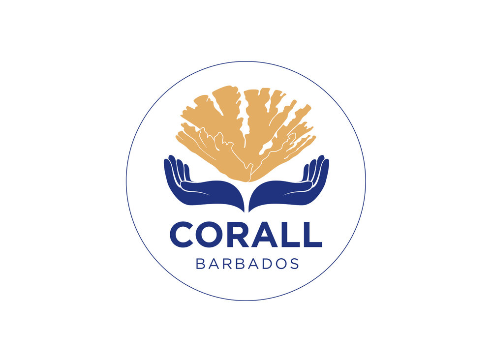 corall barbados - Volunteering with the Corall Reef Alliance Barbados is a huge honour. As Vice President my work involves organising reef assessments, scoping and project managing the monitoring of our 3 sites of successful coral out plants.This charity is one of the organisations that you can sponsor as part of your Green Globe commitments to supporting local environmental issues.
