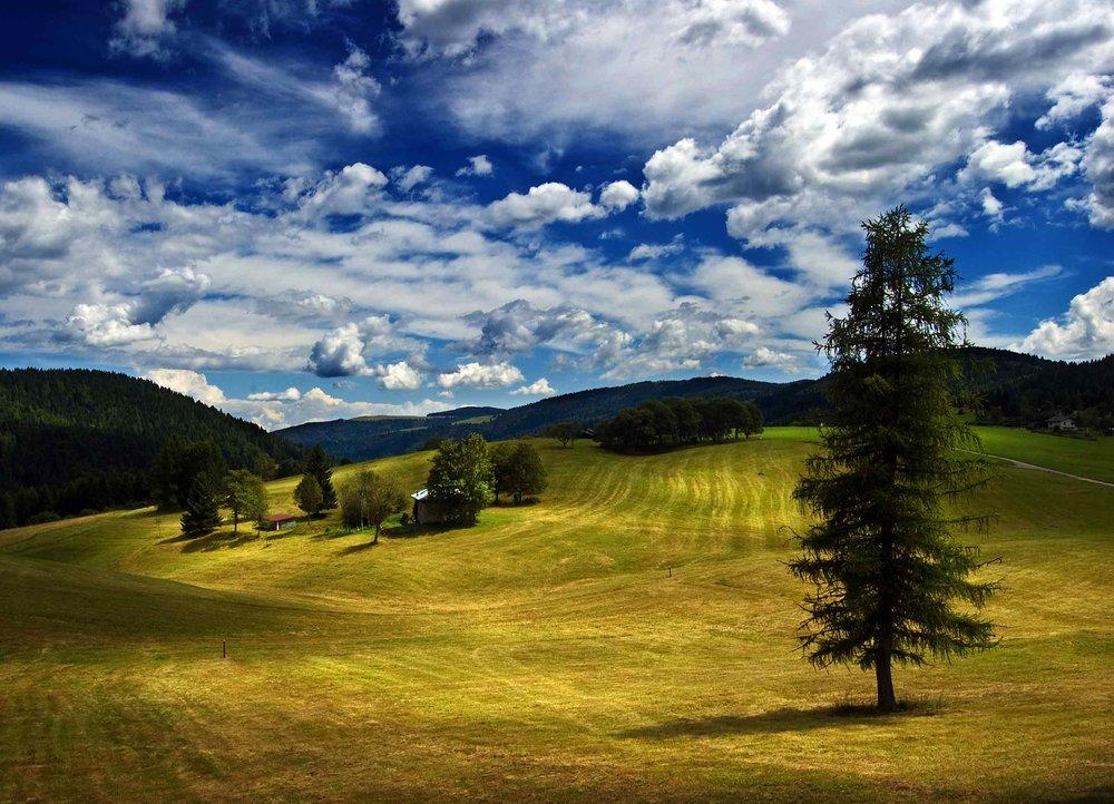 Impressionism-of-midsummer-day.jpg