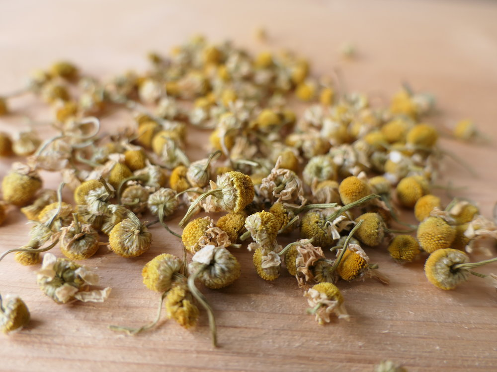 Matricariae flos  / Kamillenblüten