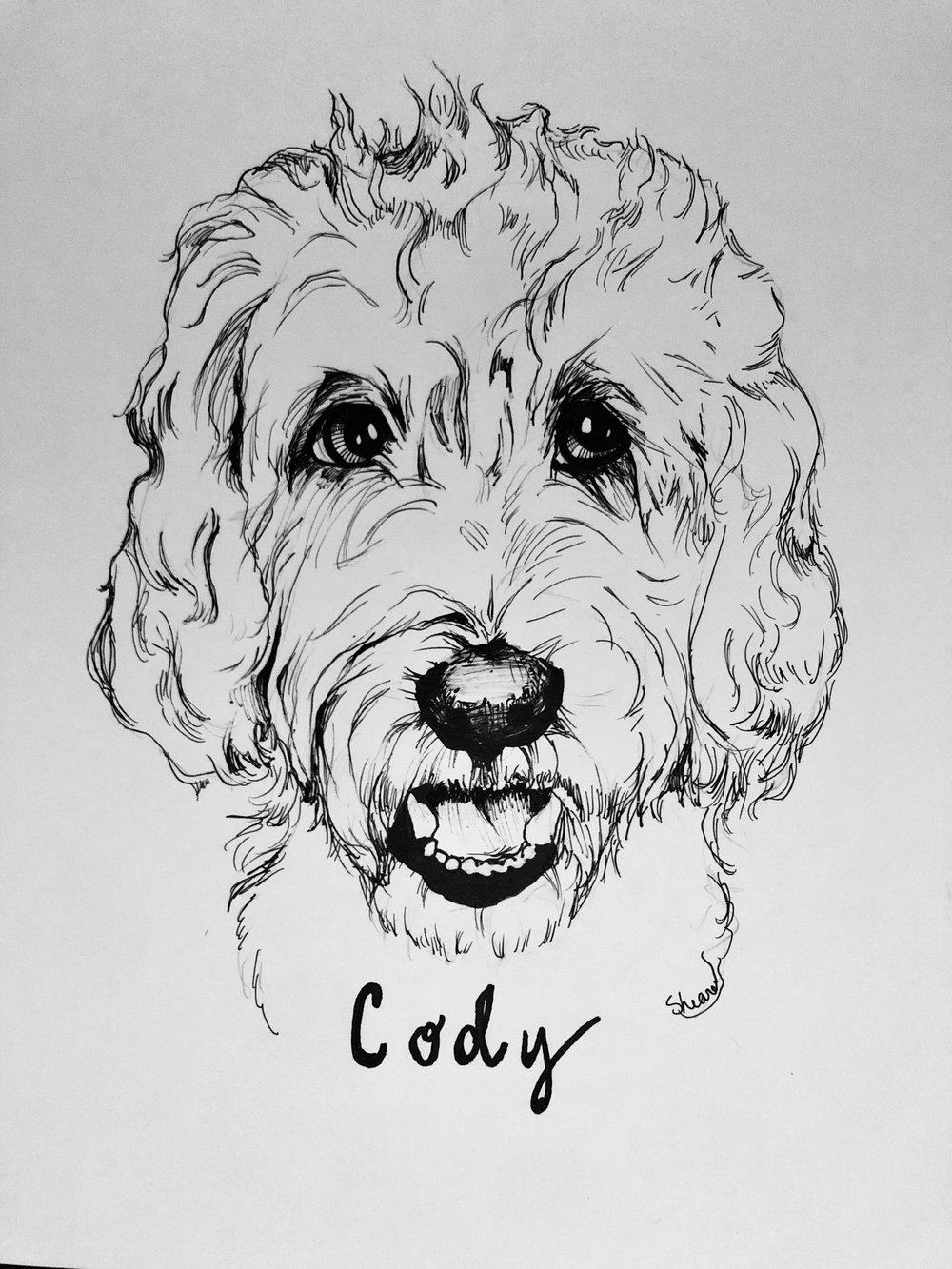 CodyDoodleSketch.jpeg