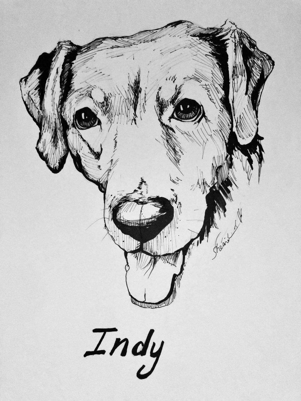 IndyLabSketch.jpg