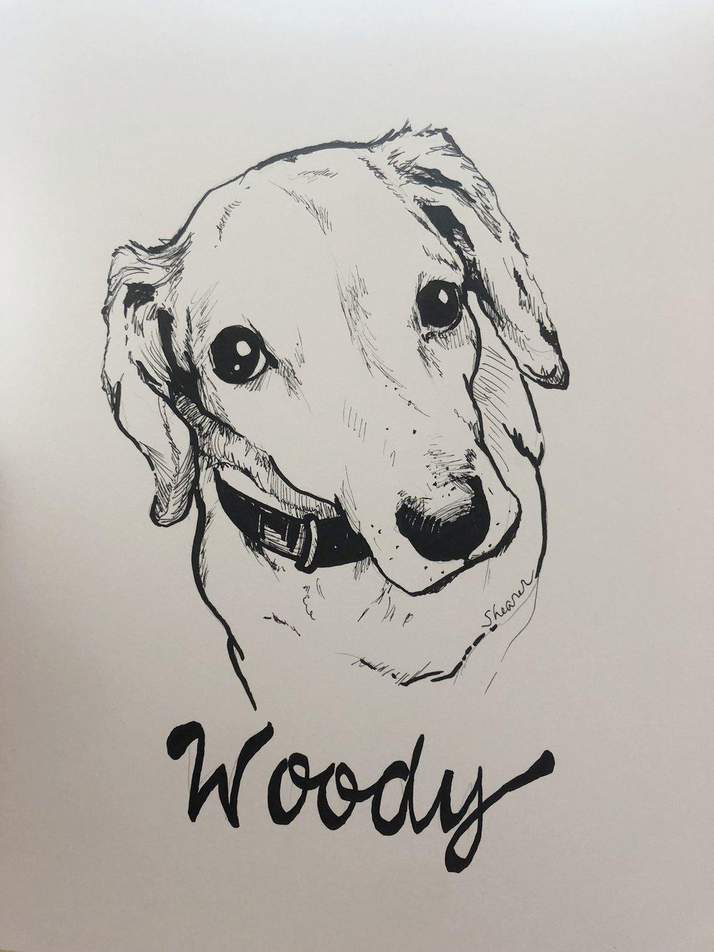 Woody.jpeg