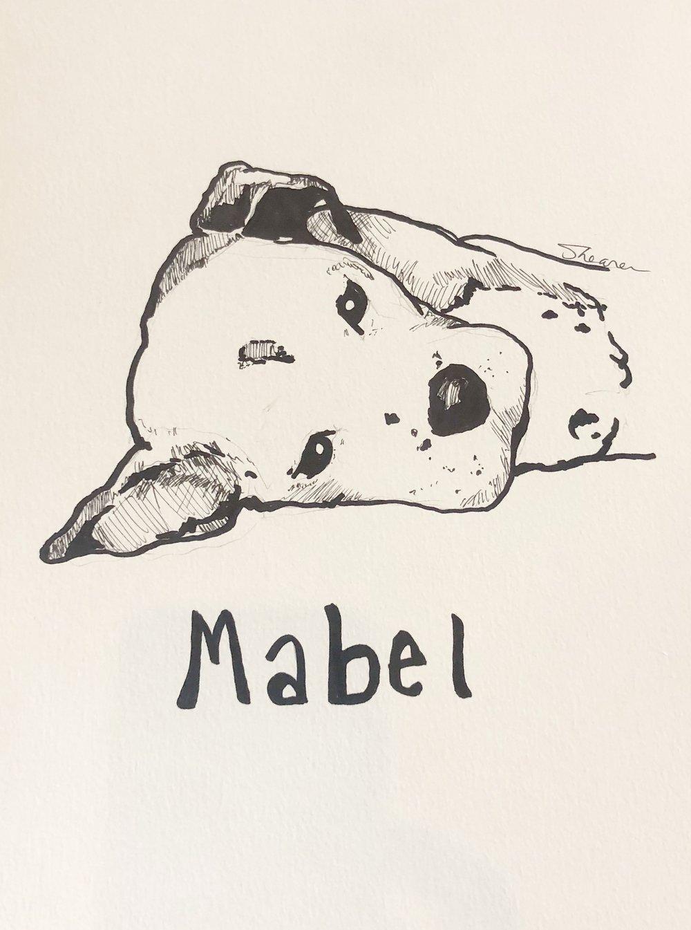 Mabel.jpeg